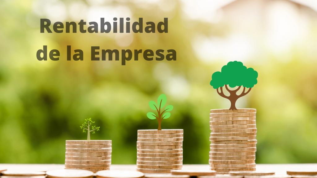 8 Pasos para mejorar la rentabilidad de la empresa